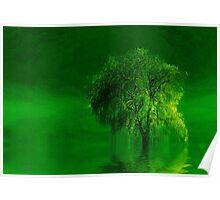 Terre verde'... Poster