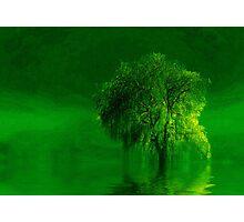 Terre verde'... Photographic Print