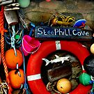 steephill cove  by seagrass-cowes