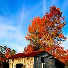 Harvest Past - North Georgia Autumn by Mark Tisdale
