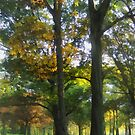 Hint of Autumn by Susan Savad