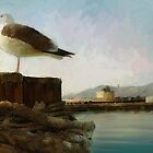 San Francisco Seagulls from peir. by twhiteart