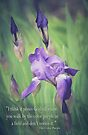The Color Purple by KBritt