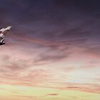 Vulcan Flight by James Biggadike