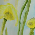 Daffodils by Deborah Pass