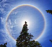 Cirrus Solar Halo by DArthurBrown