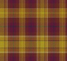 02560 Sedgwick County, Kansas E-fficial Fashion Tartan Fabric Print Iphone Case by Detnecs2013