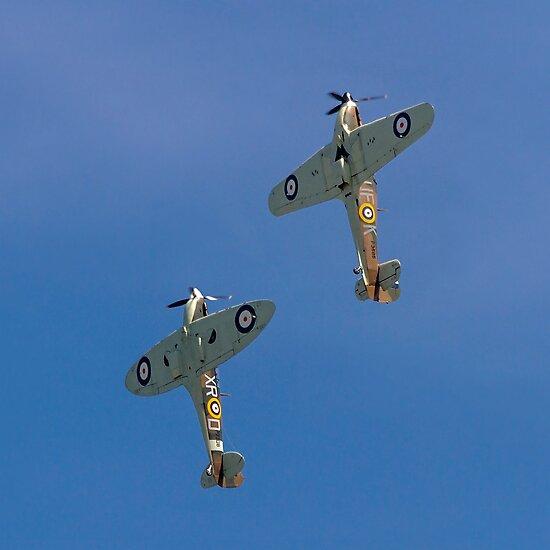 Sea Hurricane X AE977 and Spitfire Ia AR213 by Colin Smedley
