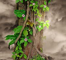 The Spring Tree by Christine Lake