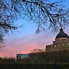 Red Sky by Liffey14
