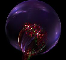 Magic Bubble by James Brotherton