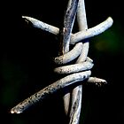 Barbed Wire by petzl