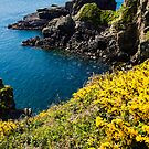 St Non's Bay West Wales by mlphoto