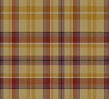 02561 Dane County, Wisconsin E-fficial Fashion Tartan Fabric Print Iphone Case by Detnecs2013