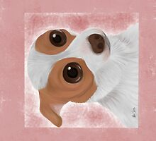 Cutie Chihuahua by AliyaBloodHeart