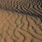 Texture of Sleeping Bear Dunes by DArthurBrown