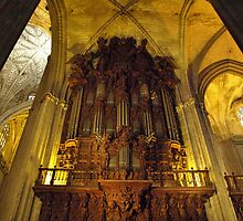 Inside the Cathedral by Janone