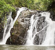 Dinner Falls, Atherton Tablelands, Queensland, Australia.  by Allport Photography