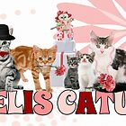Felis Catus - for the Cat Lover's Eyes Only by Doreen Erhardt