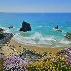 Cornwall: Colours on the Coast at Bedruthan by Rob Parsons