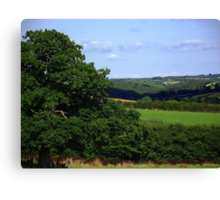 Devon Summer Canvas Print
