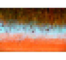 Nature Pixels Photographic Print