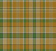 02582 Polk County, Iowa E-fficial Fashion Tartan Fabric Print Iphone Case by Detnecs2013