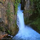 Toketee Falls, Oregon by DArthurBrown
