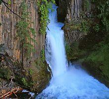 Toketee Falls, Oregon by DArthurBrown
