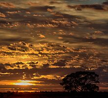 Silhouette Sunrise by Mark Cooper