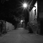 Alley at night by photogaet