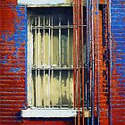 Barred Window, Hell's Kitchen by RC deWinter
