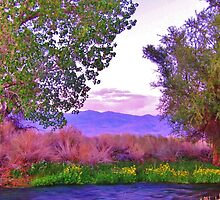 Purple Mountains Majesty by marilyn diaz