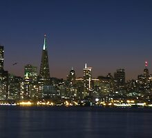San Francisco Nights by David Denny