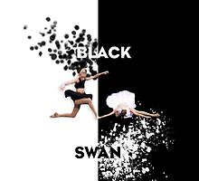 Black Swan by showtimebows