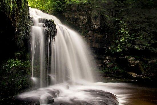 West Burton Falls by Theresa Elvin