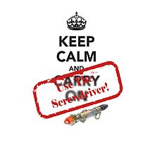 Keep Calm and Use the Screwdriver! by Dragonz