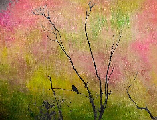 Transition by Anne  McGinn