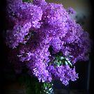 Lilac Bouquet by kkphoto1