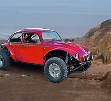 Driving Me Buggy II by DaveKoontz