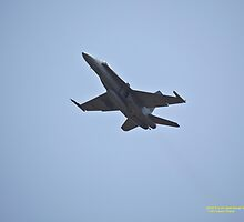 RAAF F/A18 Hornet Fighter, Williamtown NSW Australia by SNPenfold