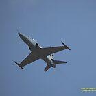 RAAF BAE Hawk 127, Williamtown NSW Australia by SNPenfold
