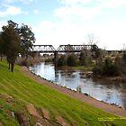 Dunolly Ford Bridge, Singleton, NSW Australia by SNPenfold