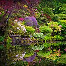 Garden and Pond by homendn