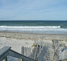 Cape Cod Massachusetts by AnnDixon