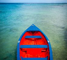 Red and blue fishing boat by Ralph Goldsmith