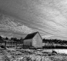 New River Path by Nigel Bangert