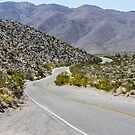 Mountain Road to The Anza Borrego Desert by heatherfriedman