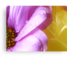 Flowers with Raindrops Canvas Print