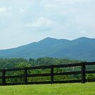 Fence in front of Blue Ridge Mountains by Karen Checca